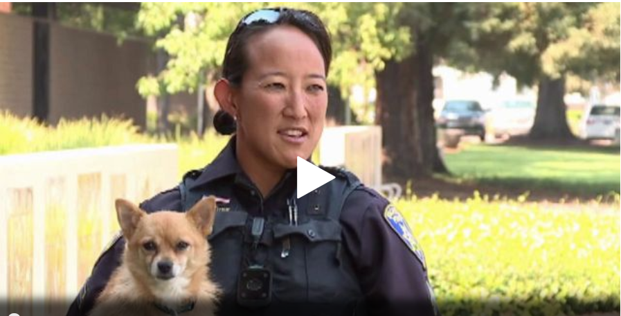 Vacaville PD Adopts Dog Rescued From Wildfires